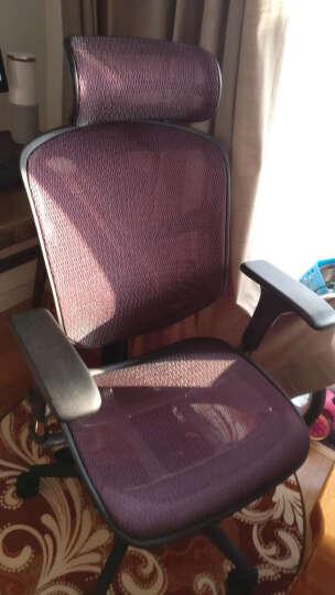 保友Ergonor人体工学椅子联友电脑椅办公椅网布椅子多功能职员椅金卓B 定制橙色3D网布(带腰垫) 尼龙脚 晒单图