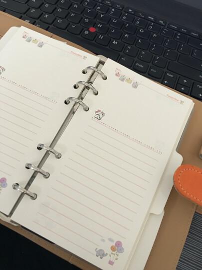 可爱彩色内页手帐活页内芯标准6孔活页本A6A5记事本笔记本子横线方格卡通DIY手册手账本 A5随手记 晒单图