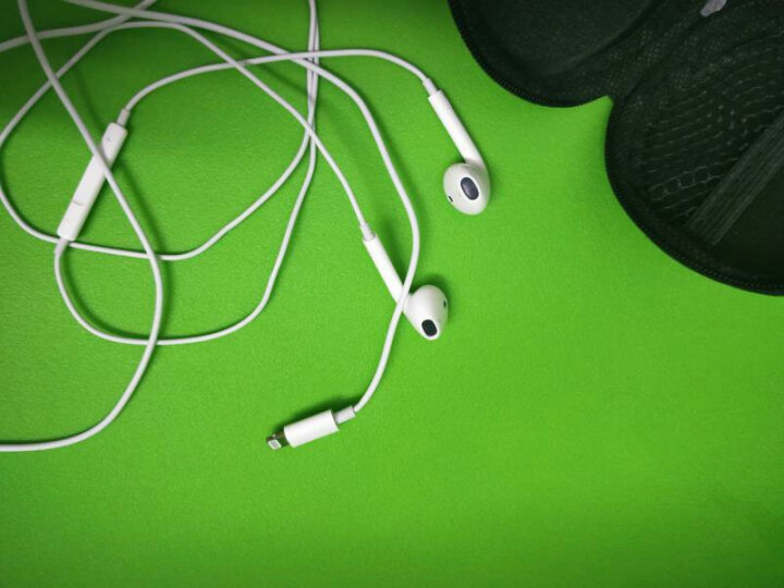 【领券减10】三力浦 入耳式耳机适用苹果7/iphone7/8/X/6s plus/原装ipad耳塞 lightning接口支持通话适用果7/8/X手机 晒单图