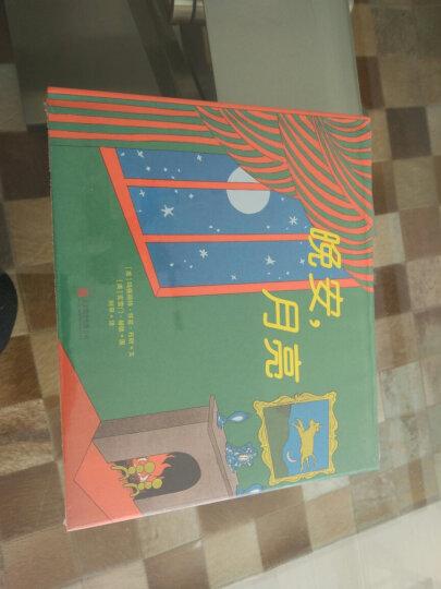 海豚绘本花园:小老鼠亚历山大 晒单图