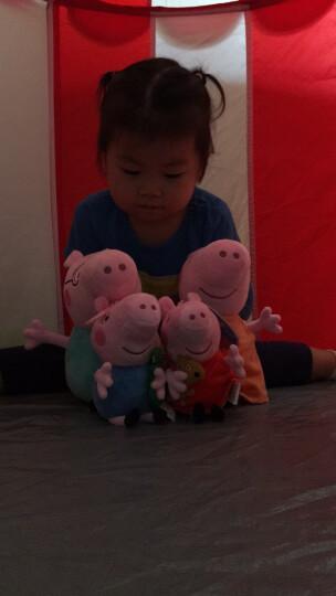 小猪佩奇Peppa Pig粉红猪小妹佩佩猪 毛绒玩具 抱枕公仔布娃娃玩偶系列 小号套装19cm+30cm 晒单图