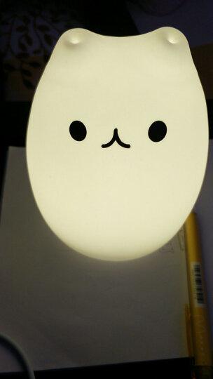 拍拍兔七彩闪光灯led人体感应夜灯充电节能新生儿哺乳小夜灯护眼夜用小台灯可爱卡通氛围照明灯 馋嘴猫 充电款 晒单图
