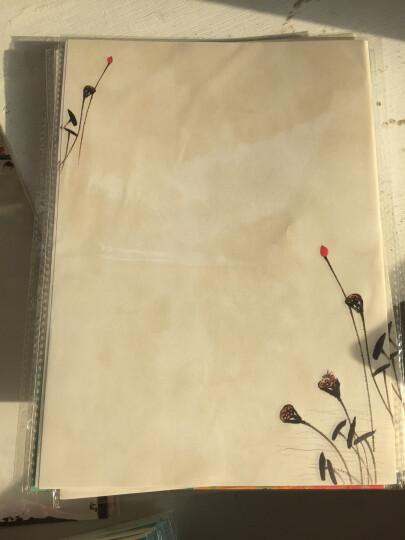 乾越(qianyue)山水花鸟中国风古典信纸 唯美浪漫信笺纸 学生精美古风彩色情书 桃花扇.40张 晒单图