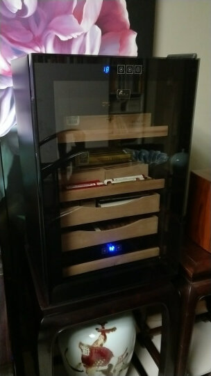 蒂朵(Diduo) BJ-508红酒柜恒温酒柜子家用压缩机葡萄酒冷藏保鲜冰箱冰吧冰柜小型储藏柜 晒单图