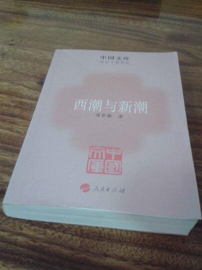 中国文库·综合·普及类:西潮与新潮 晒单图