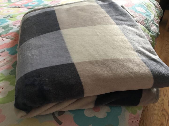 优雅100法兰绒四季毛毯床单双人婴儿童学生宿舍网红夏季空调办公室午睡盖毯子 青春树 180*200cm 晒单图