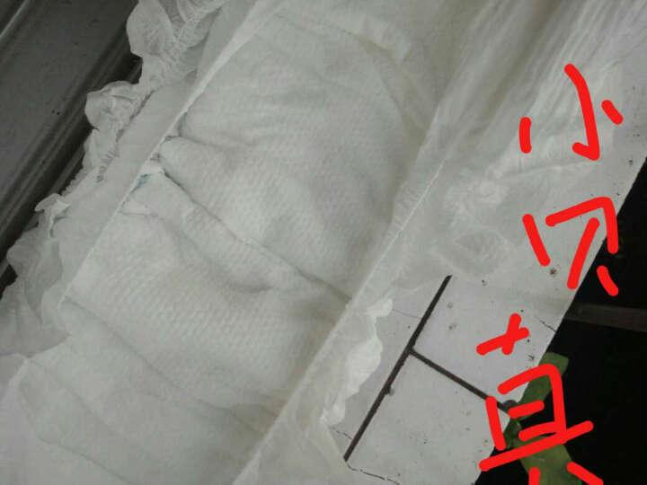 小贝真(sobesen)嘘嘘实实超薄干爽纸尿裤XL20片(12kg以上) 晒单图