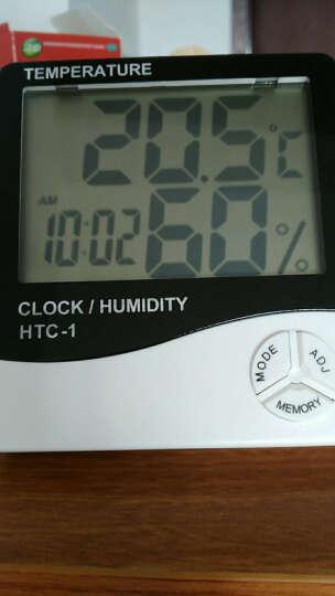 探戈(TANGO)电子温度计多功能日历时钟闹钟 办公桌面电子时钟 语音报时 夜光自动感应 绿色 晒单图
