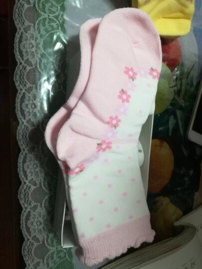 【5双装】浪莎Langsha儿童袜子短袜男童女童袜子小孩中筒棉袜四季款 3D171207 【5双装】 9-11cm 晒单图