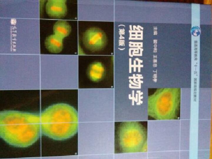 细胞生物学-第4版-普通高等教育十一五国家级规划 晒单图
