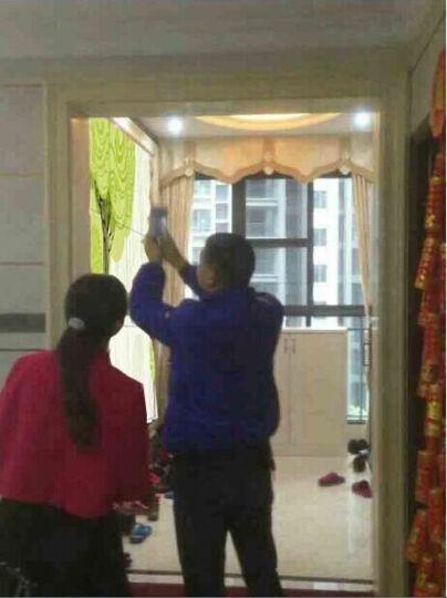 瓷刻 客厅电视背景墙 瓷砖 电视墙  常青树 全抛釉+精雕/0.1平方米 晒单图