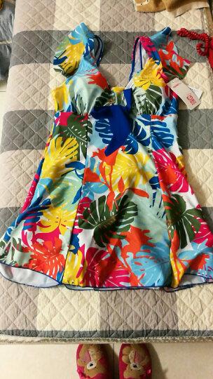 海波特(SEA'BBOT)泳衣女保守遮肚显瘦钢托游泳衣连体裙式平角妈妈大码温泉泳装 蓝叶子 XL 晒单图