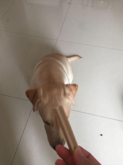 宝路 宠物零食狗零食 成犬大型犬洁齿棒磨牙棒狗咬胶125g*12整盒装(新老包装交替发货) 晒单图