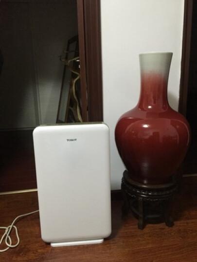 格力(DREE)大松 空气净化器无耗材家用静音 负离子除雾霾二手烟PM2.5 KJ200F-A01 晒单图