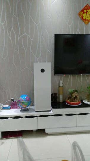 小米(MI) 小米空气净化器2S/pro家用公司办公室智能除甲醛雾霾二手烟PM2.5空气净化机带滤芯 米家pro+滤芯除异味花粉版 晒单图