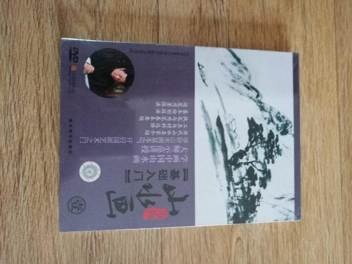 山水画(壹):基础入门(DVD) 晒单图