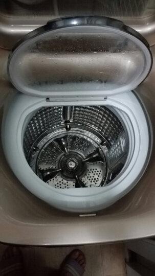 海尔(Haier)卡萨帝迷你洗衣机 香槟金3公斤免清洗 高温烫洗顶开式定频 C601 30RG 晒单图