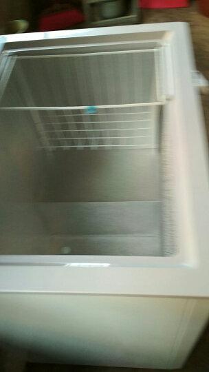 星星(XINGX)BD/BC-140E 140升 家用小冰柜 冷冻冷藏转换冷柜 单温冰箱 安全门锁 顶开门 晒单图