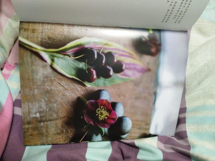 【京东定制版】七七的影像秘籍:恋爱影像学+幸福照相馆(套装共2册) 晒单图
