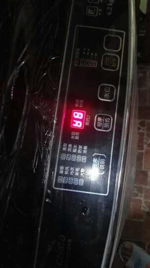 志高(CHIGO) 7.5公斤全自动洗衣机 小型迷你家用宿舍租房波轮 带风干可预约 特价清仓+7.5公斤灰色【强力风干+蓝光照射】 晒单图
