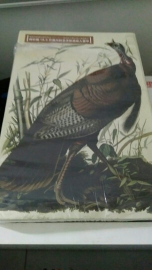 世界鸟类图谱 美洲鸟类 晒单图
