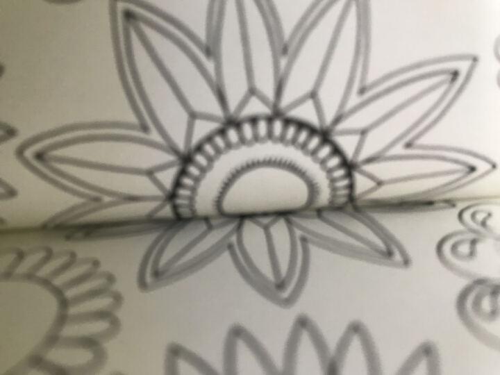 【中商原版】秘密花园正版 英文版原版 Secret Garden 填色书涂鸦涂色绘本 晒单图