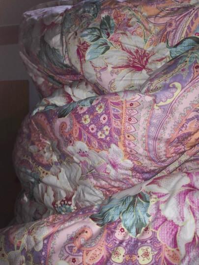 富安娜家纺 羽绒被冬被子白鹅绒被冬厚被芯四季保暖被 萨尔茨堡臻至白鹅绒被 图兰朵/花之城 90%白鹅绒-花之城 1.8床(230*229cm) 晒单图
