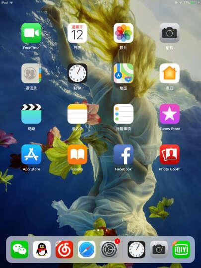 Apple iPad mini 4 7.9英寸 平板电脑(128G WLAN+Cellular版8芯片/Retina显示屏 MK762CH)深空灰色 晒单图