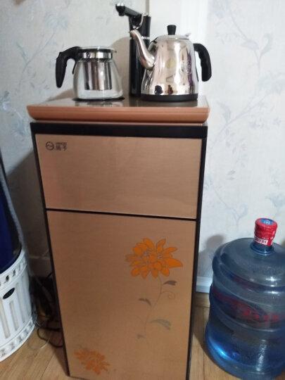 扬子 茶吧机 家用立式多功能智能温热型饮水机S-02B 富贵金 香槟金 晒单图