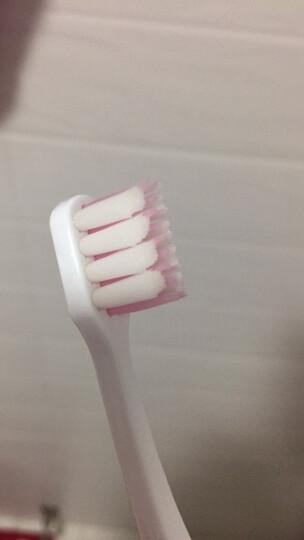 狮王(Lion)SYSTEMA牙龈护理超细毛牙刷 (高密度小头软毛) 1支装 (颜色随机发货)(日本原装进口) 晒单图