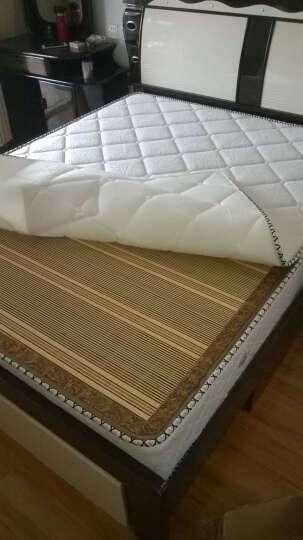 丽美诗 椰棕床垫 弹簧床垫 席梦思卧室家具 904 针织面料+环保椰梦维+九区弹簧 1.8*2.0 晒单图