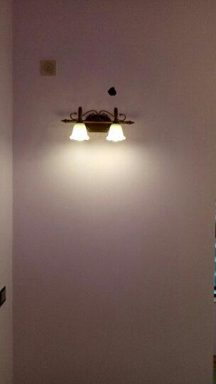 臻诚 欧式复古铁艺 镜前灯 卫生间镜前灯 浴室厕所 美式壁灯梳妆台 灯具 J3001 紫铜金2头A款44cm送LED灯泡 晒单图