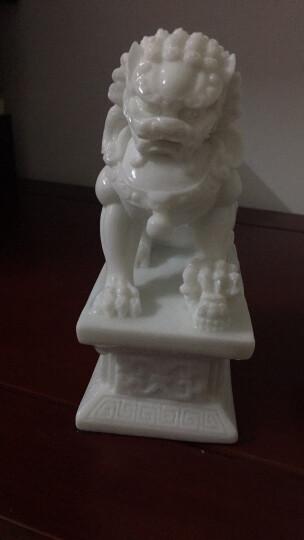 石狮子一对汉白玉石雕狮子风水狮子石狮子看门摆件工艺品 C款北方狮一对 晒单图