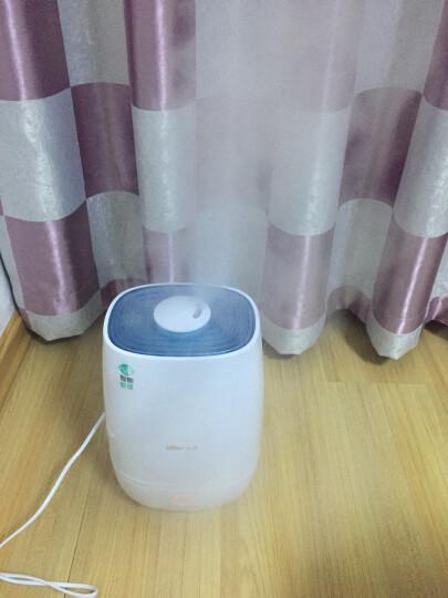 小熊(Bear)加湿器 5L 智能恒湿 家用静音大容量 净化增湿 办公室卧室加湿JSQ-A50M2 晒单图