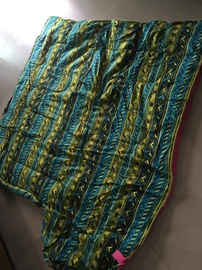 Westfield outdoor我飞睡袋法莱绒户外室内成人旅游旅行睡袋冬夏薄厚四季 天蓝色枕头 晒单图