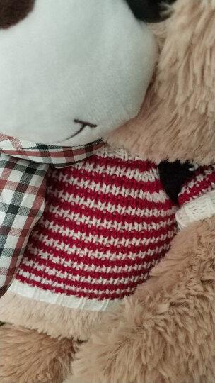 爱尚熊毛绒玩具泰迪熊猫公仔抱抱熊狗熊布娃娃女孩可爱睡觉抱枕玩偶娃娃生日礼物送女生七夕情人节80cm开心 晒单图