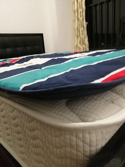 红瑞家纺 床上用品法兰绒珊瑚绒床垫子床褥子 双人垫子褥子宿舍防滑榻榻米薄地铺睡垫 1.5米床用 -英伦时尚 晒单图