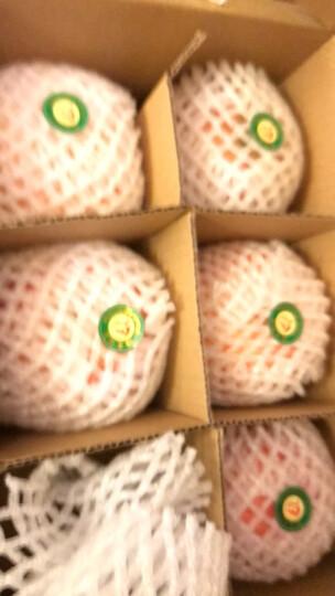 【凤翔馆】新鲜红富士 凤翔苹果 现摘现发 陕西特产 水果简装礼盒 晒单图