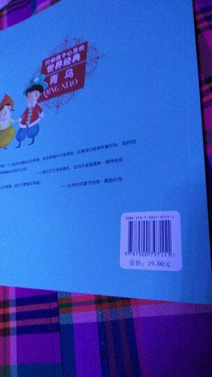 柳林风声——打动孩子心灵的世界经典童话 晒单图