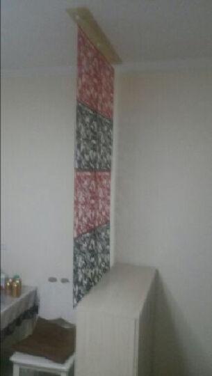 享泽家居 4个装现代简约雕花墙贴纸客厅卧室餐厅镂空挂式隔断屏风创意墙贴画电视背景墙 红色 4个装 晒单图
