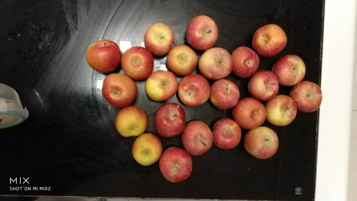 汇果洲 泰国番荔枝释迦佛头果 进口新鲜水果 2kg 约10个 晒单图