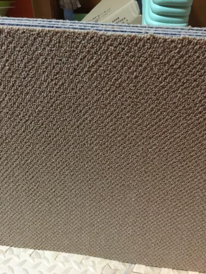 免胶地毯 地毯卧室满铺客厅隔音自吸式毛绒拼接地毯 日本进口日毯 (一箱16片装) HT103核桃色 晒单图