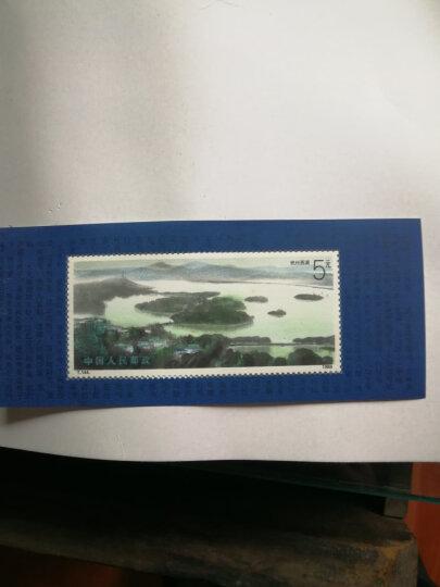 T144M 杭州西湖邮票小型张 晒单图