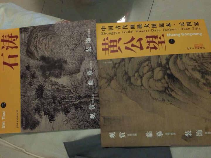 中国古代画派大图范本·元四家一:天池石壁图 晒单图