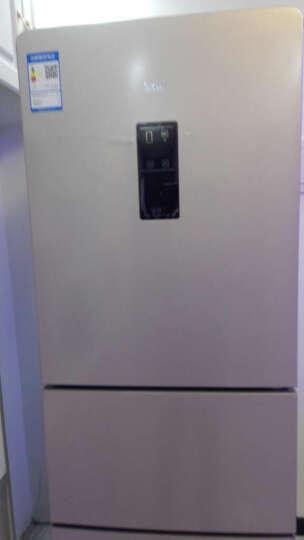 TCL 228升 风冷无霜三门电冰箱 AAT负离子养鲜 电脑控温 独立三温区 (流光金)BCD-228TEWF1 晒单图