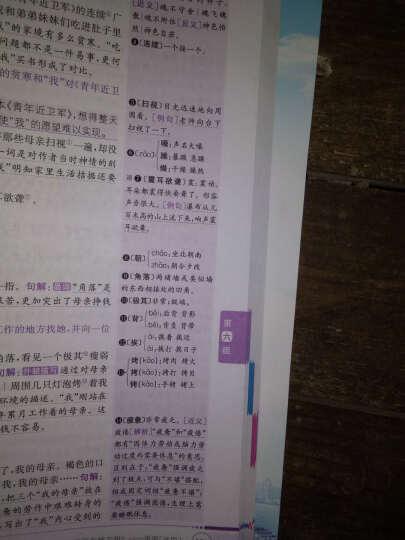 包邮小学教材全解5五年级上册语文书全解人教版全解五年级语文上册教辅书可搭课本教材全练 晒单图