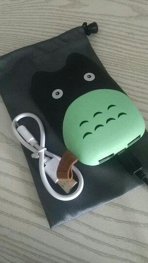 百汇铭 迷你充电宝10000毫安移动电源超薄小巧可爱卡通龙猫大容量便携聚合物电芯 小晕晕 晒单图