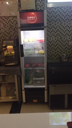 五洲伯乐(WUZHOUBOLE) 展示柜饮料柜立式冰柜商用冷藏保鲜柜陈列柜超市啤酒点菜柜 LC-328L 晒单图