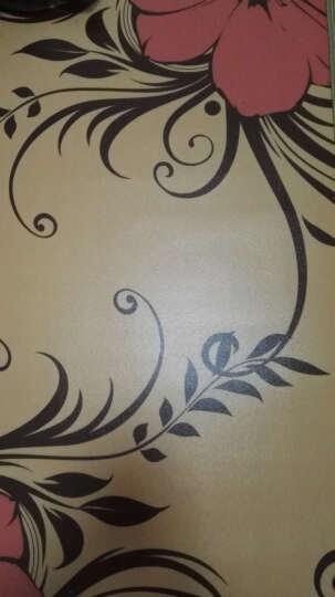 茂阳(maoyang) 茂阳碳晶地暖垫150*100  地暖毯移动发热地板膜节能采暖 CS05 晒单图