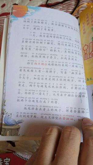 四大名著全4册6-9岁全套注音彩图版 小学生版红楼梦/三国演义/水浒传/西游记青少年白话文 晒单图